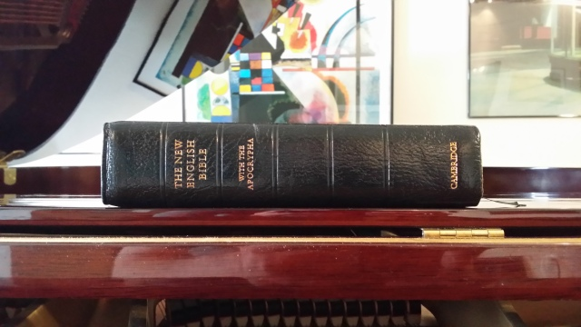 Probably one of my most cherished versions, the New English Bible. Very easy to understand.